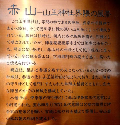 49_04.jpg